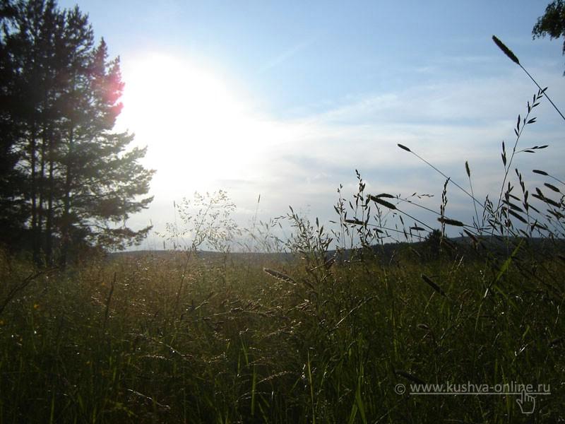 Фото дня от 9 июля 2008 г. г. Автор: Анонимный фотомастер
