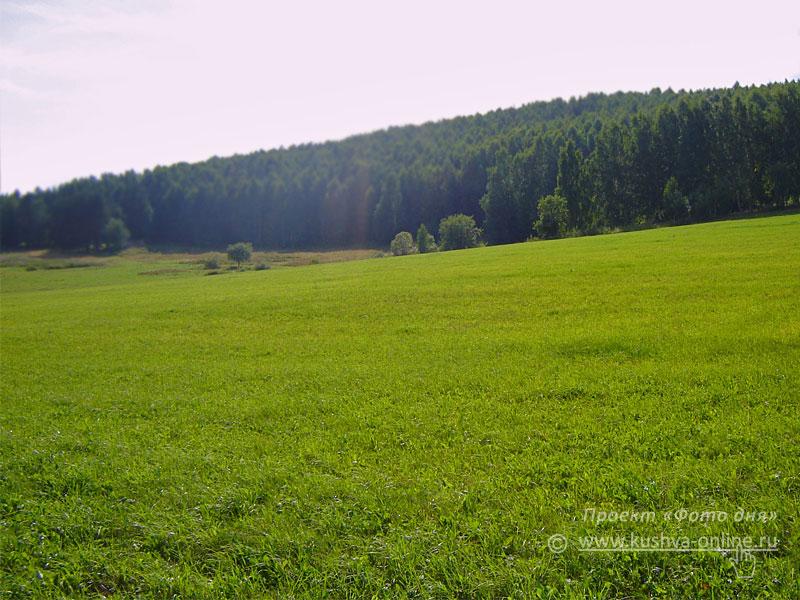 Фото дня от 20 августа 2008 г. г. Автор: Александр Скрябин