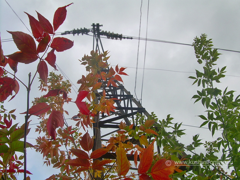 Фото дня от 12 сентября 2008 г. г. Автор: Александр Скрябин