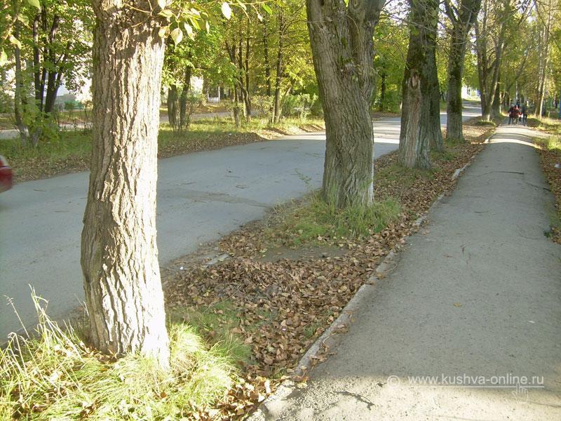 Фото дня от 21 сентября 2008 г. г. Автор: Анонимный фотомастер