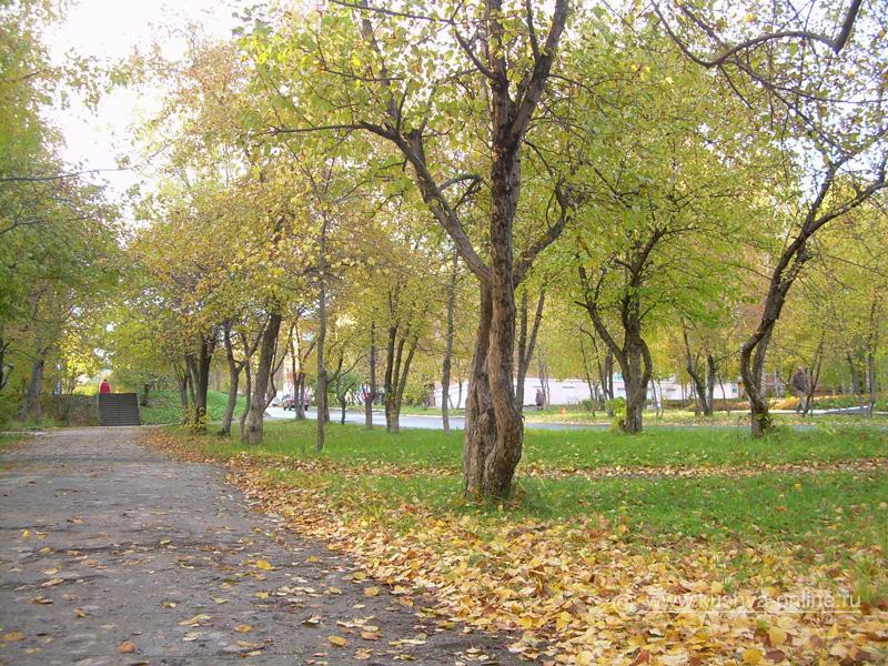Фото дня от 30 сентября 2008 г. г. Автор: Александр Скрябин