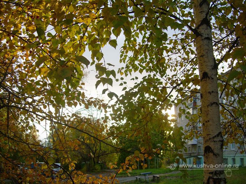 Фото дня от 1 октября 2008 г. г. Автор: Александр Скрябин