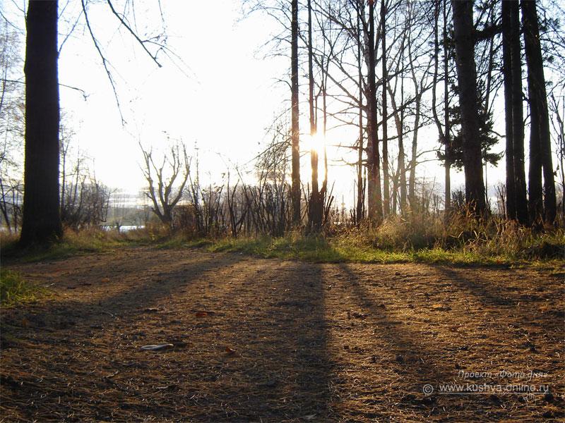 Фото дня от 2 ноября 2008 г. г. Автор: Александр Скрябин