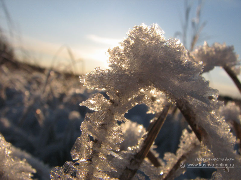 Фото дня от 25 декабря 2008 г. г. Автор: Евгений Панькин