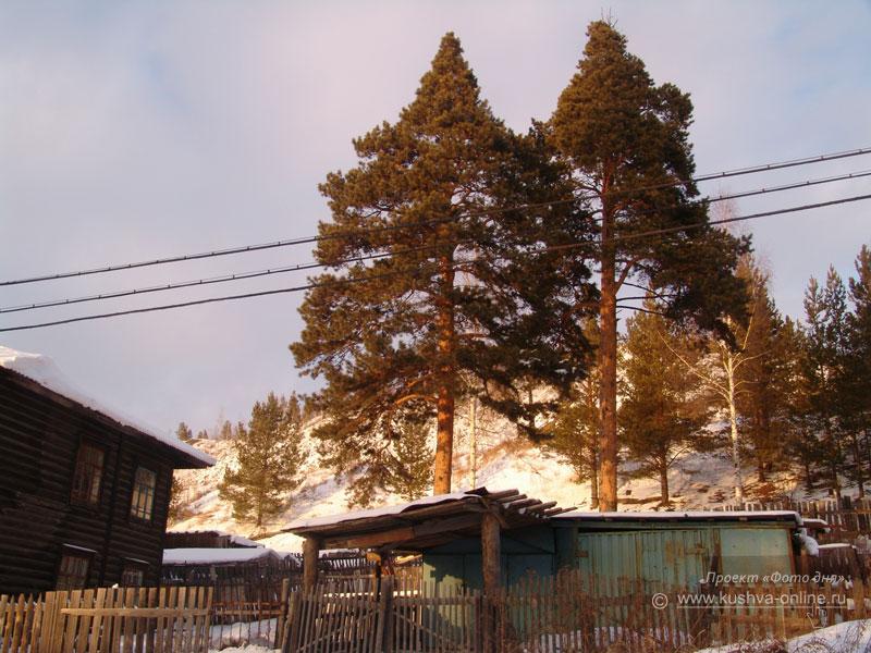 Фото дня от 29 января 2009 г. г. Автор: Александр Скрябин