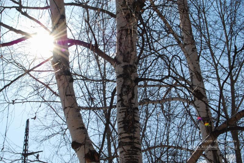 Фото дня от 8 марта 2009 г. г. Автор: Анонимный фотомастер