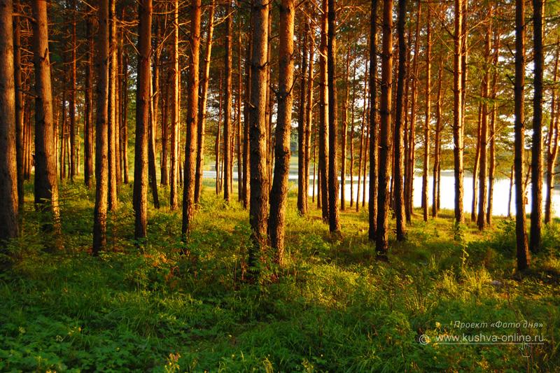 Фото дня от 16 июля 2009 г. г. Автор: Александр Скрябин