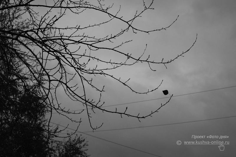 Фото дня от 3 октября 2009 г. г. Автор: Александр Скрябин