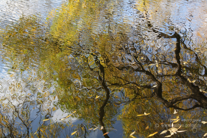 Фото дня от 22 октября 2009 г. г. Автор: Анастасия Москвина