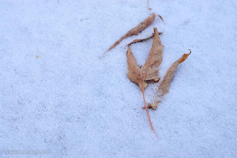 Фото дня от 2 ноября 2009 г. г. Автор: Александр Скрябин