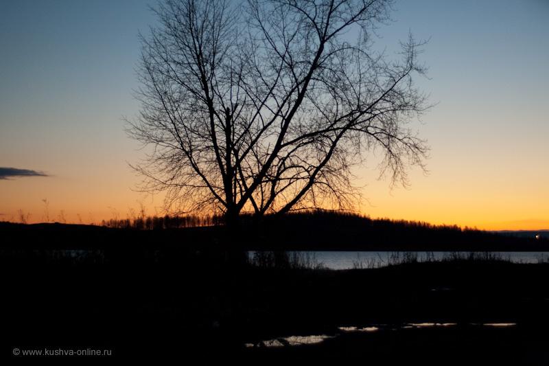 Фото дня от 12 ноября 2009 г. г. Автор: Александр Скрябин