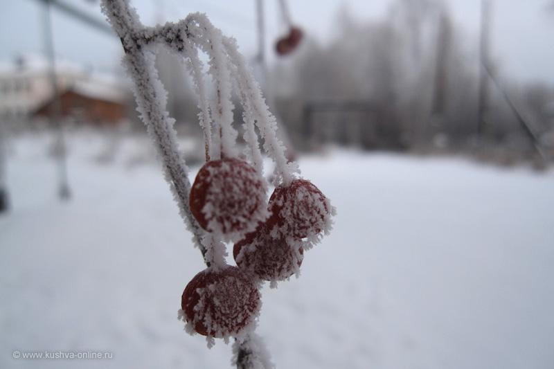 Фото дня от 21 декабря 2009 г. г. Автор: Луиза Садкова