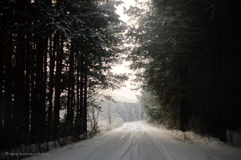 Фото дня от 22 декабря 2009 г. г. Автор: Александр Скрябин