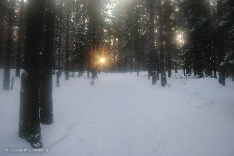 Фото дня от 28 декабря 2009 г. г. Автор: Александр Скрябин
