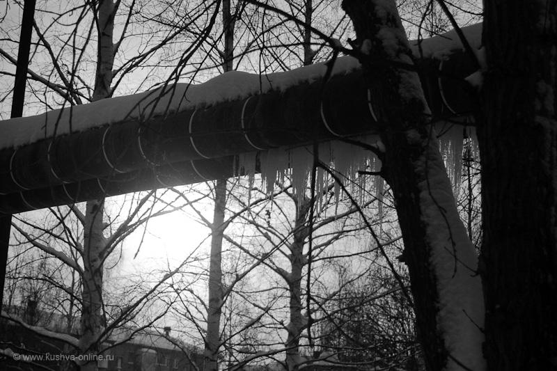 Фото дня от 8 января 2010 г. г. Автор: Александр Скрябин