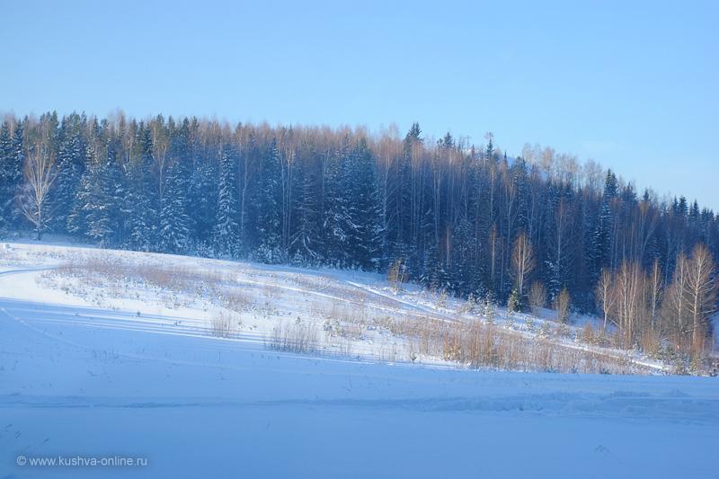 Фото дня от 28 января 2010 г. г. Автор: Александр Скрябин