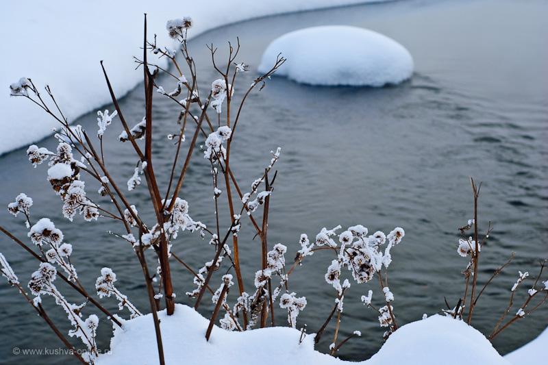 Фото дня от 17 февраля 2010 г. г. Автор: Александр Скрябин