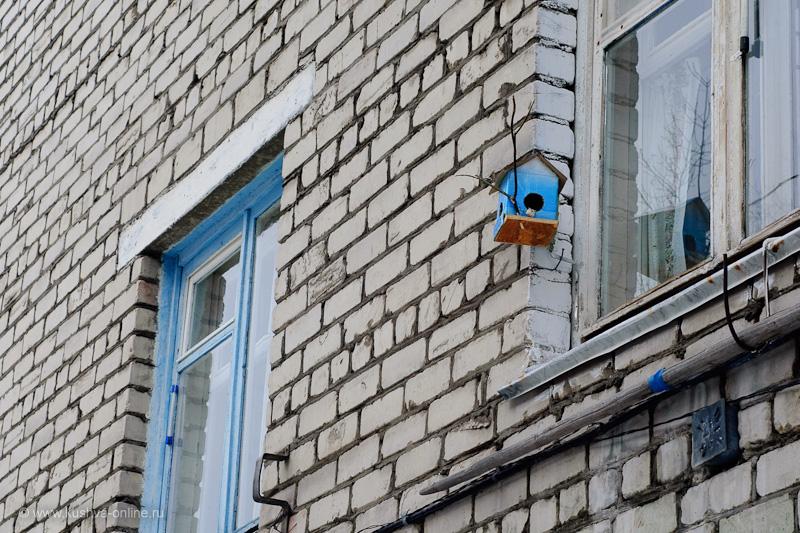 Фото дня от 10 марта 2010 г. г. Автор: Александр Скрябин