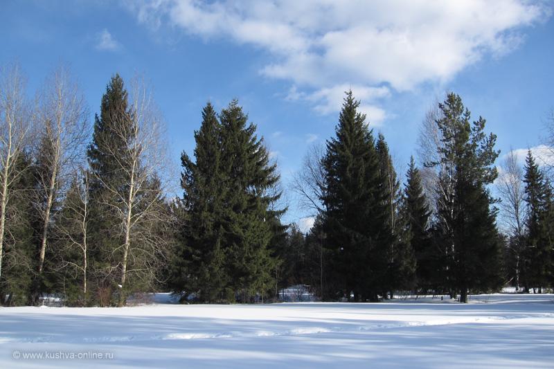 Фото дня от 22 марта 2010 г. г. Автор: Луиза Садкова