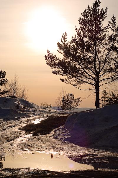 Фото дня от 16 апреля 2010 г. г. Автор: Александр Скрябин