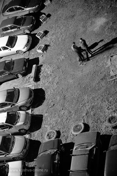 Фото дня от 25 апреля 2010 г. г. Автор: Александр Скрябин