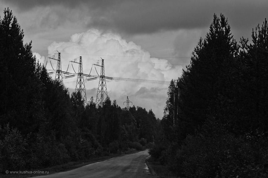 Фото дня от 28 августа 2010 г. г. Автор: Александр Скрябин
