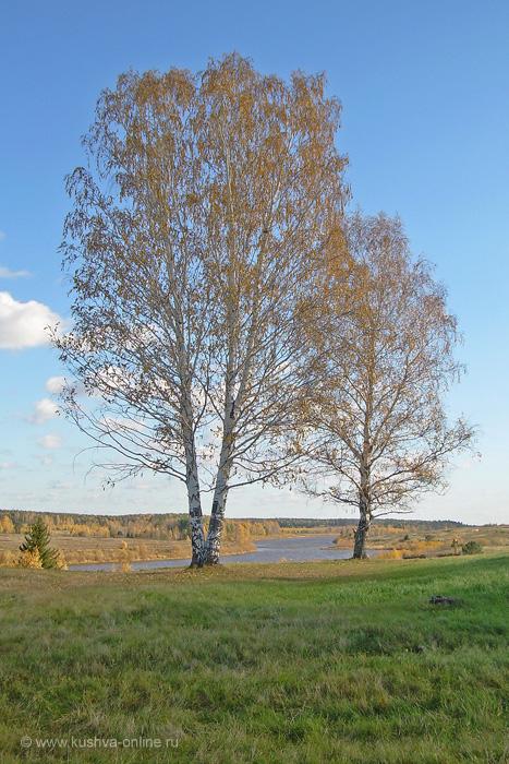 Фото дня от 10 сентября 2010 г. г. Автор: Ульяна Мылицына
