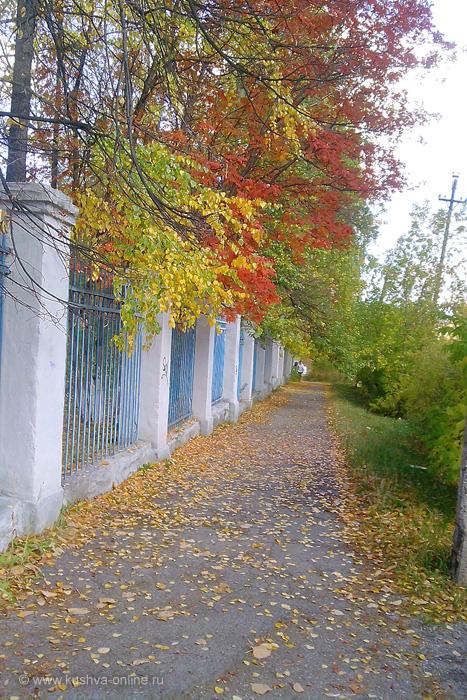 Фото дня от 28 сентября 2010 г. г. Автор: Ангелина Шаля