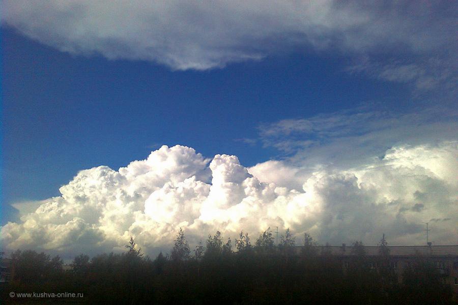 Фото дня от 9 октября 2010 г. г. Автор: Ольга Волкова