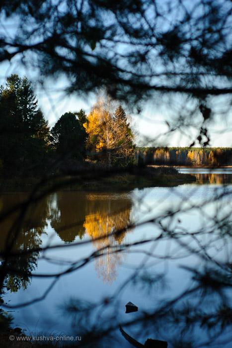 Фото дня от 13 октября 2010 г. г. Автор: Александр Скрябин