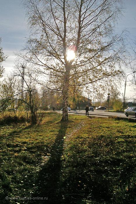Фото дня от 19 октября 2010 г. г. Автор: Ангелина Шаля