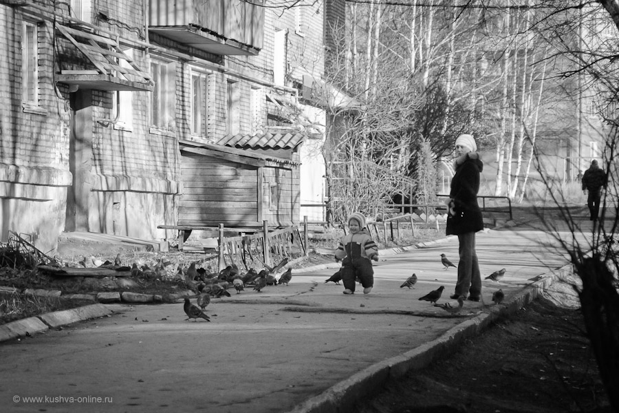 Фото дня от 5 ноября 2010 г. г. Автор: Александр Скрябин