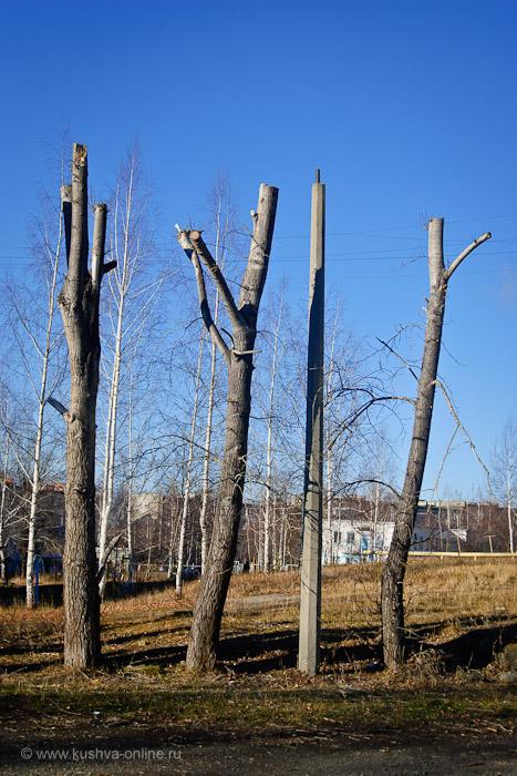 Фото дня от 7 ноября 2010 г. г. Автор: Александр Скрябин