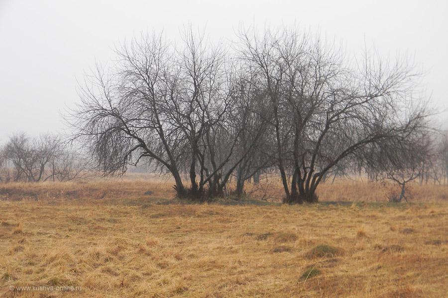 Фото дня от 16 ноября 2010 г. г. Автор: Айрат Хисматулин