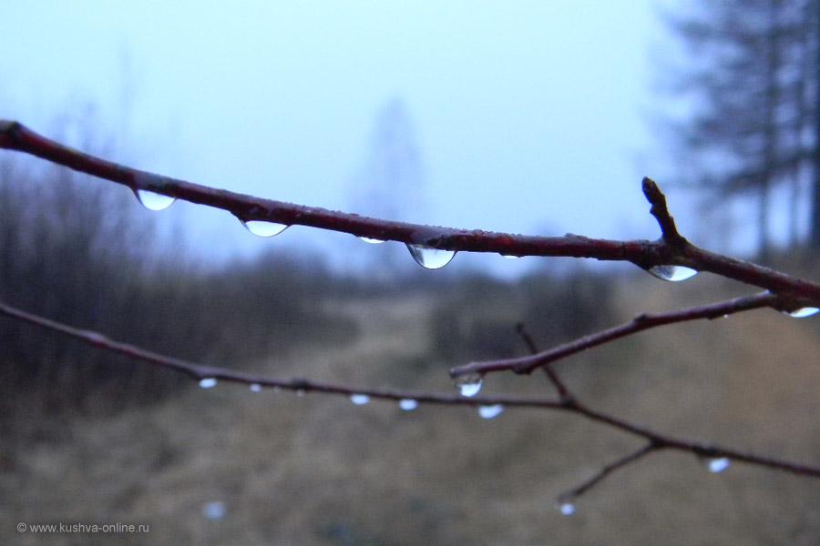 Фото дня от 19 ноября 2010 г. г. Автор: Айрат Хисматулин