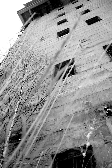 Фото дня от 26 ноября 2010 г. г. Автор: Ксюша Фирсова