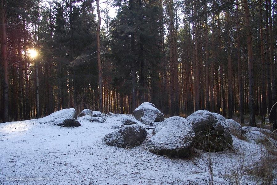 Фото дня от 29 ноября 2010 г. г. Автор: Владимир Полушин