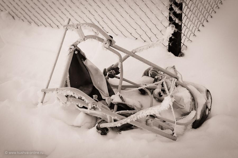 Фото дня от 18 декабря 2010 г. г. Автор: Александр Скрябин