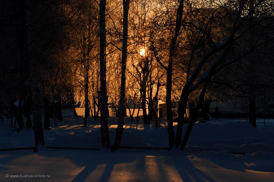 Фото дня от 19 декабря 2010 г. г. Автор: Александр Скрябин