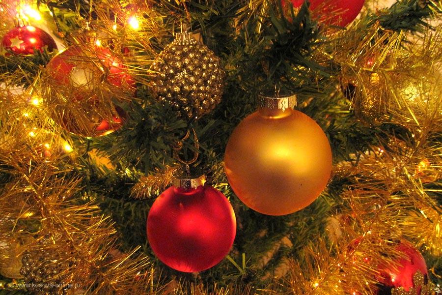 Фото дня от 28 декабря 2010 г. г. Автор: Луиза Садкова