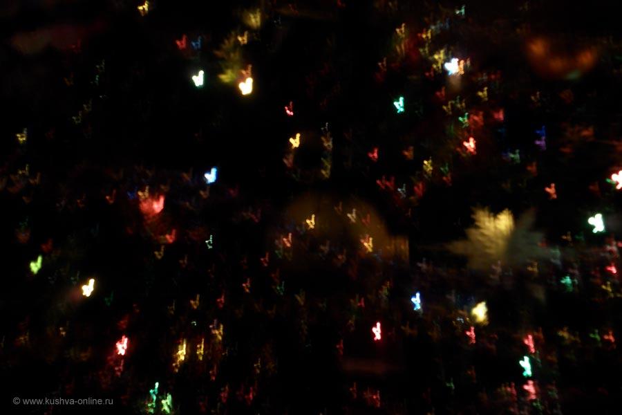 Фото дня от 29 декабря 2010 г. г. Автор: Ангелина Шаля