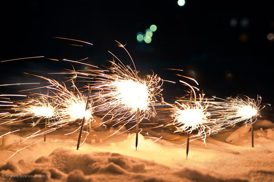 Фото дня от 14 января 2011 г. г. Автор: Александр Скрябин