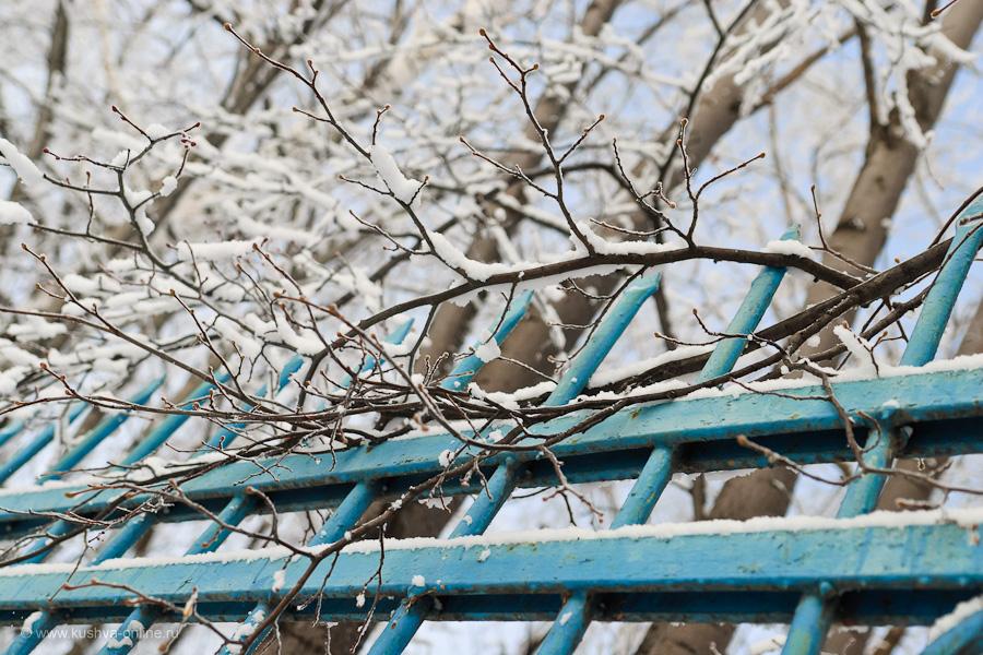 Фото дня от 24 февраля 2011 г. г. Автор: Александр Скрябин