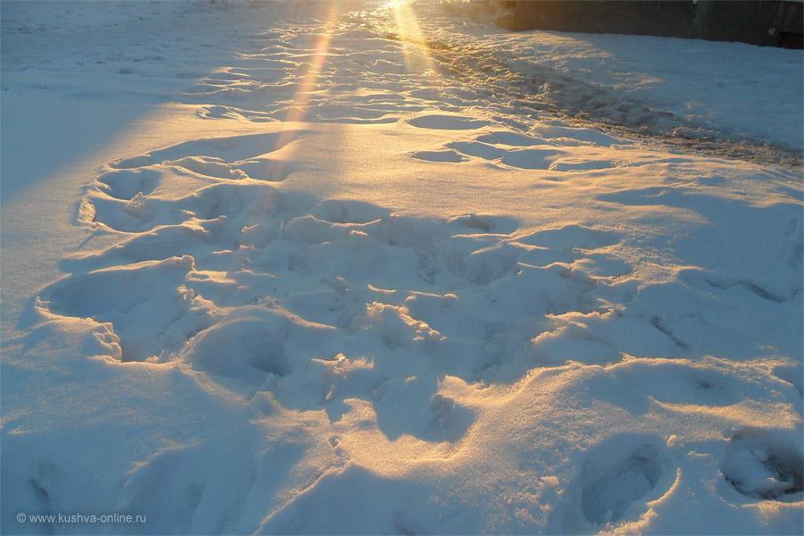 Фото дня от 30 марта 2011 г. г. Автор: Ангелина Шаля