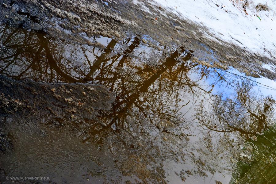 Фото дня от 6 апреля 2011 г. г. Автор: Ксюша Фирсова