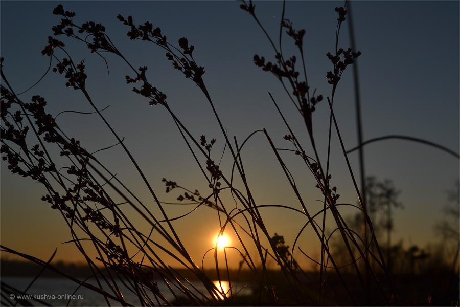 Фото дня от 10 мая 2011 г. г. Автор: Ксюша Фирсова