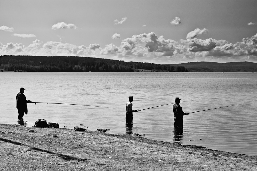 Фото дня от 24 июня 2011 г. г. Автор: Марина Варфоломеева