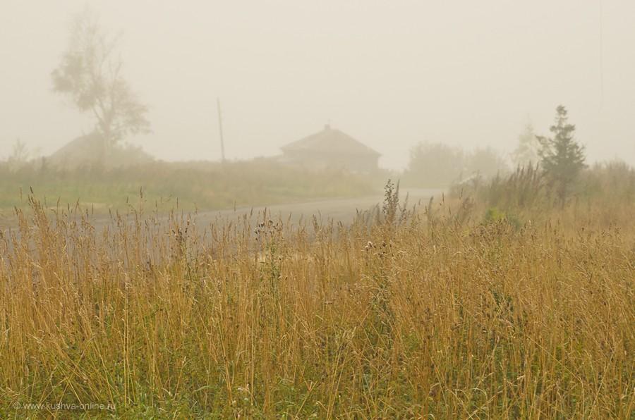 Фото дня от 8 сентября 2011 г. г. Автор: Александр Скрябин
