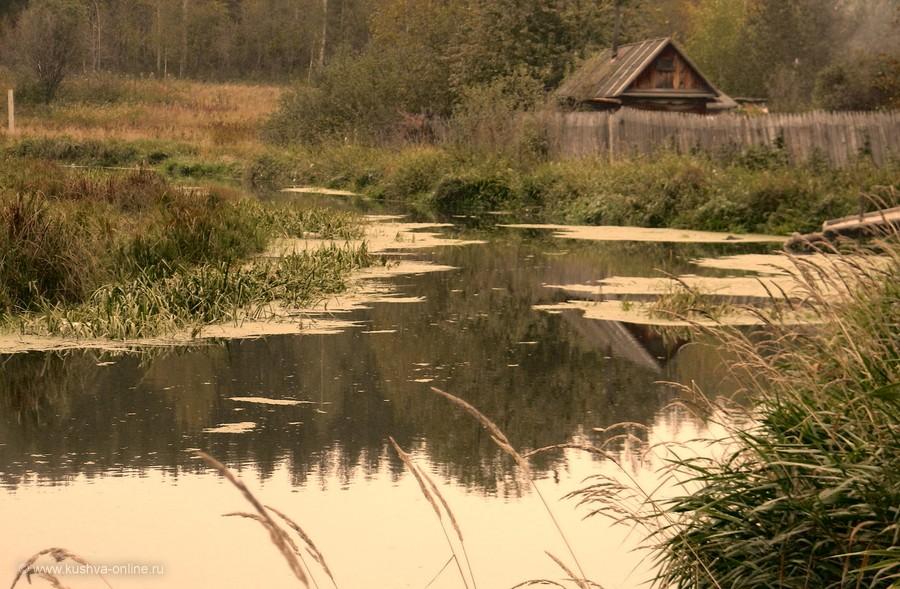 Фото дня от 21 сентября 2011 г. г. Автор: Елена Гурьянова