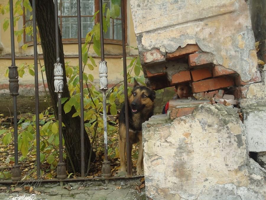 Фото дня от 5 октября 2011 г. г. Автор: Елена Гурьянова